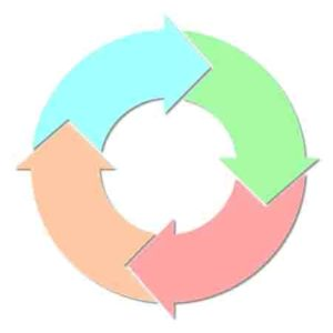 PNEI processo ciclico